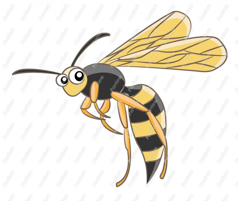Wasp Clipart Page 1.