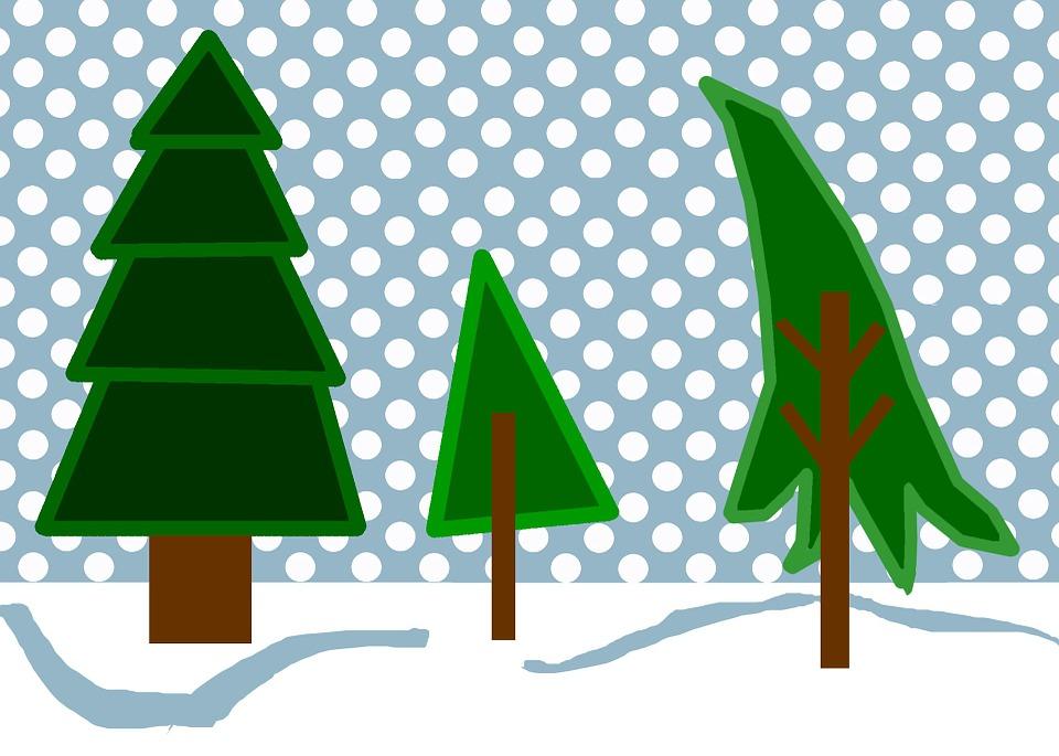 Free illustration: Winter, Woods, Snow, Scene, Trees.