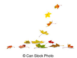 Leaves wither Illustrations and Clipart. 585 Leaves wither royalty.