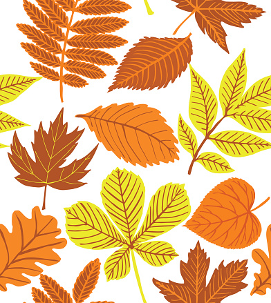 Withered Leaf Clip Art, Vector Images & Illustrations.