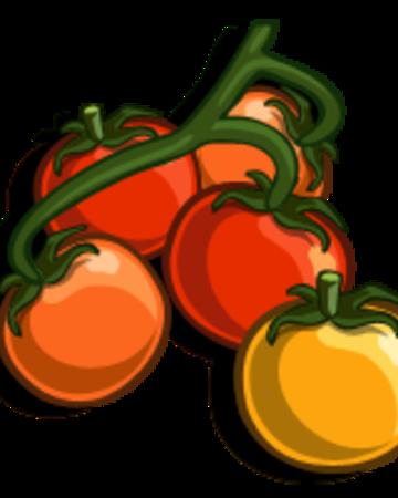Currant Tomato.