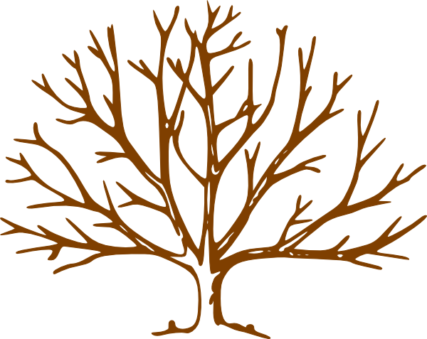 Tree Without Clipart.