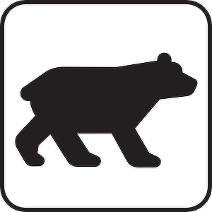 attention] Witness information of animal which seems to be bear in.
