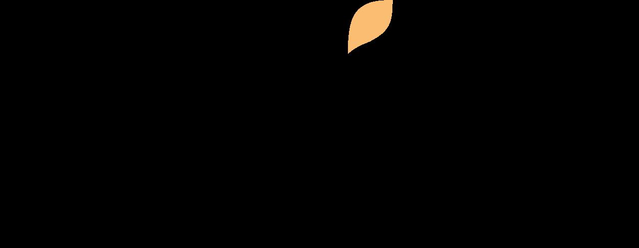 File:Wix.com website logo.svg.