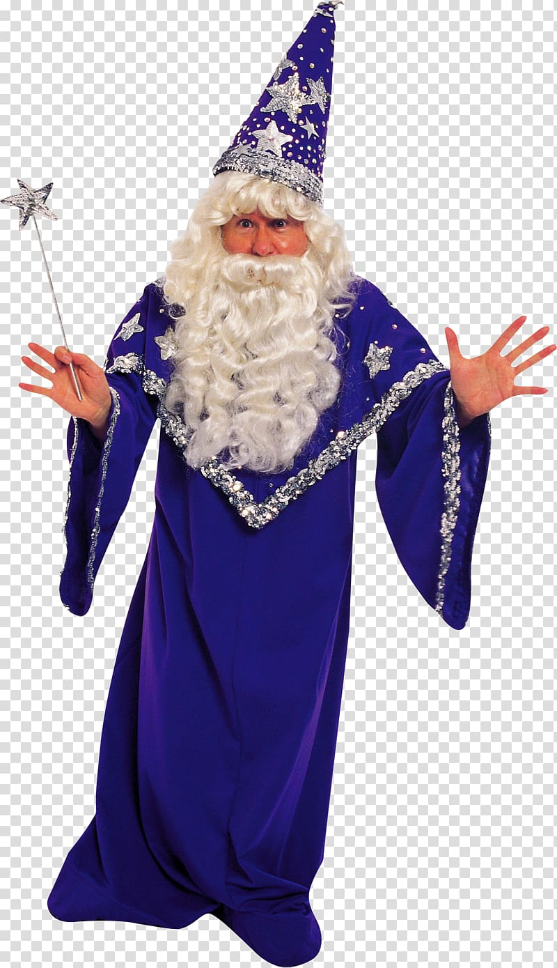 Costume party Halloween costume Clothing, wizard transparent.