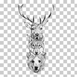 1,266 wolf Head PNG cliparts for free download.