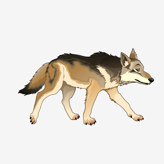 Cartoon Wolf PNG Images.
