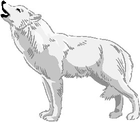Wolf Clip Art & Wolf Clip Art Clip Art Images.