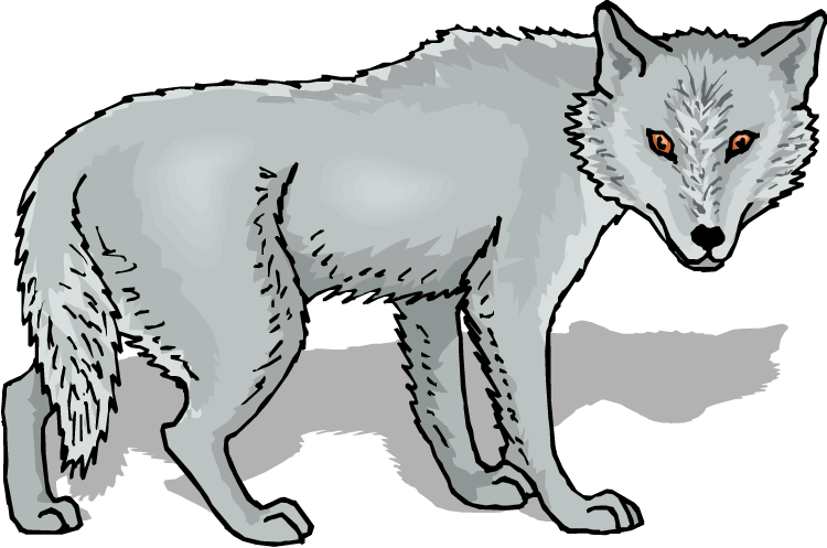 Wolf Clipart.