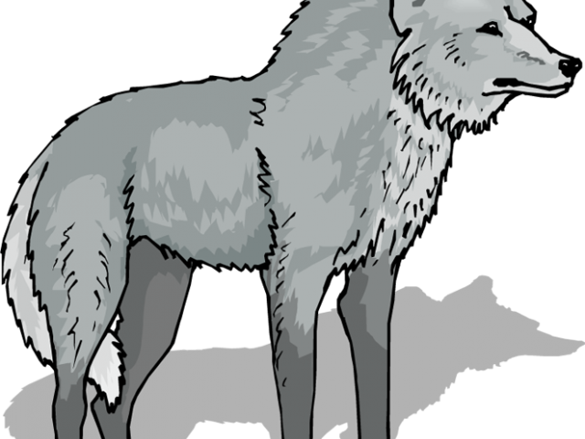 Free Wolf Clipart Transparent, Download Free Clip Art, Free.