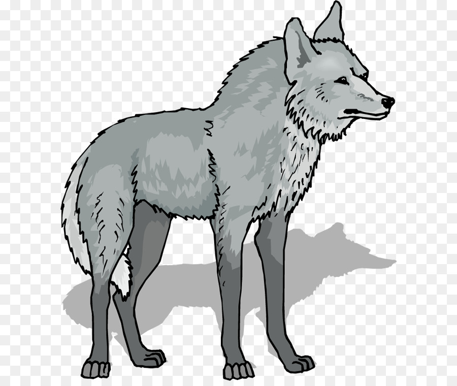 Wolf Cartoon png download.