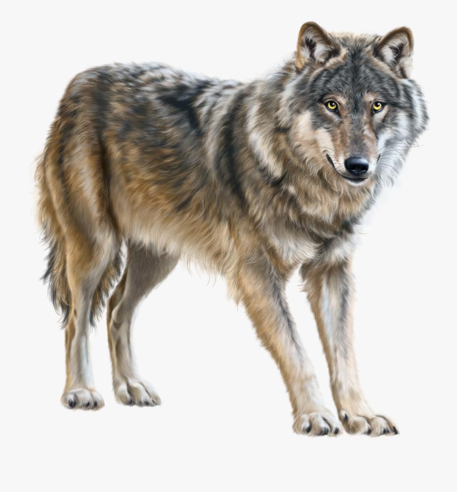 Transparent Running Wolf Clipart.