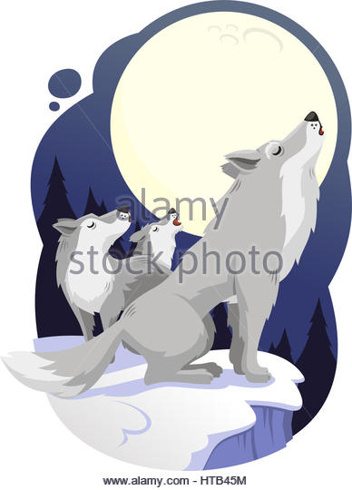 Wolf Illustration Stock Photos & Wolf Illustration Stock Images.