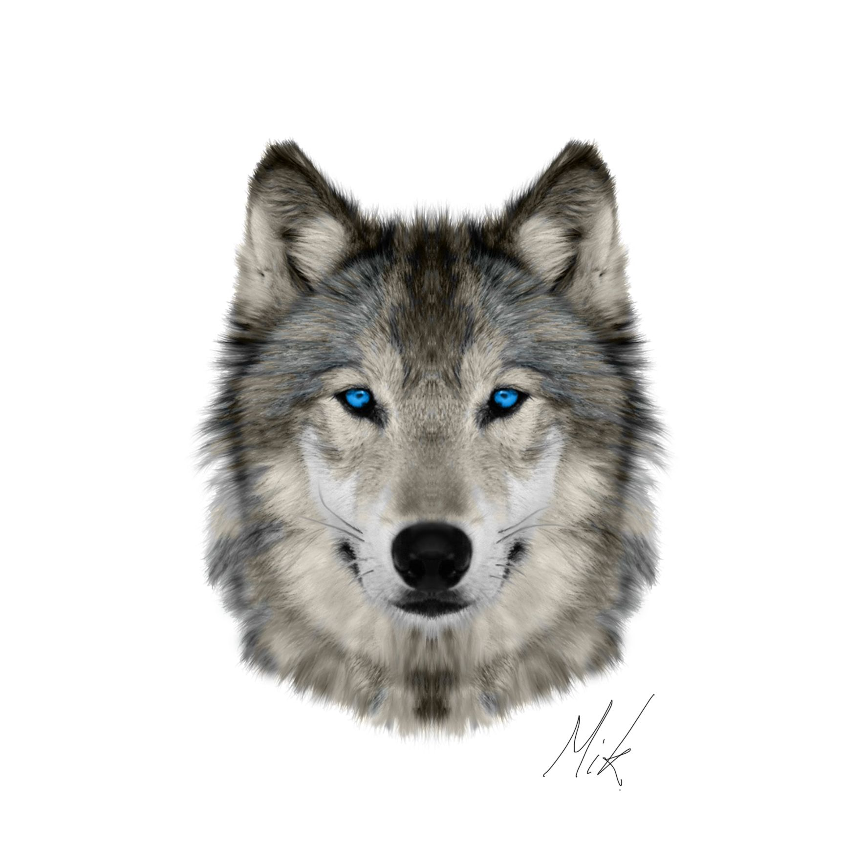 Wolf Head Png (93+ Images In Collection) #258602.