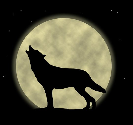 Free Cartoon Wolf Howling, Download Free Clip Art, Free Clip Art on.
