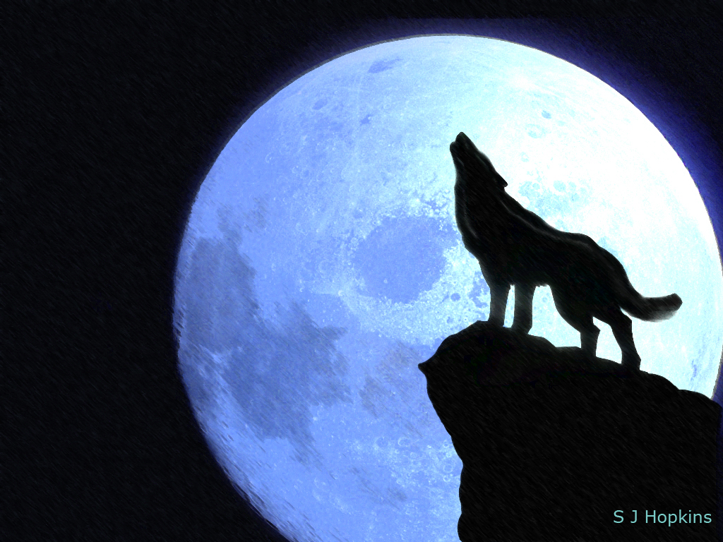 Coyote Howling At The Moon Clipart.