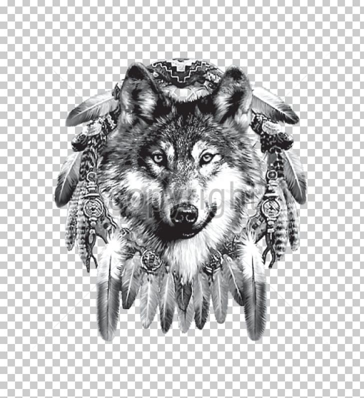 Indian Wolf Dreamcatcher Native Americans In The United.