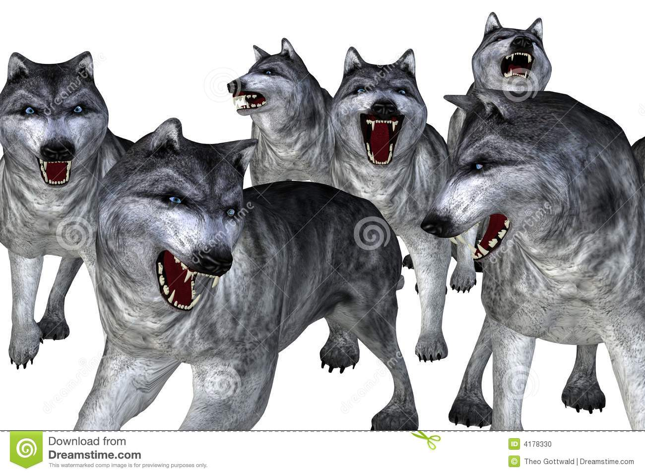 Wolf Pack Stock Photos, Images, & Pictures.