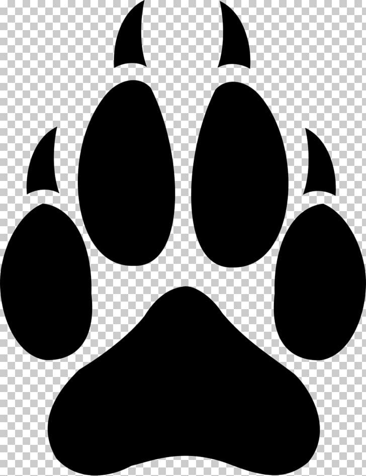 Gray wolf Cat T.