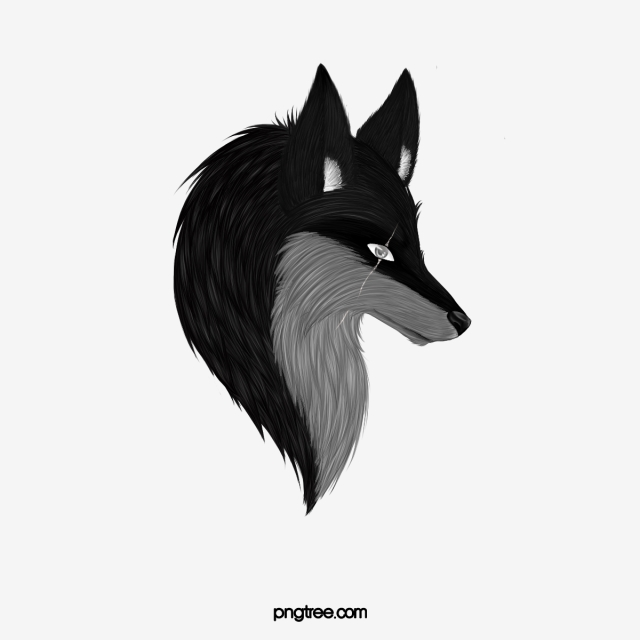 Wolf Png, Vector, PSD, and Clipart With Transparent Background for.