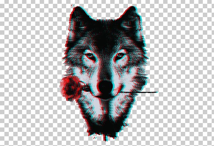 Dog Pack Black Wolf Lone Wolf PNG, Clipart, Animal, Animals, Art.