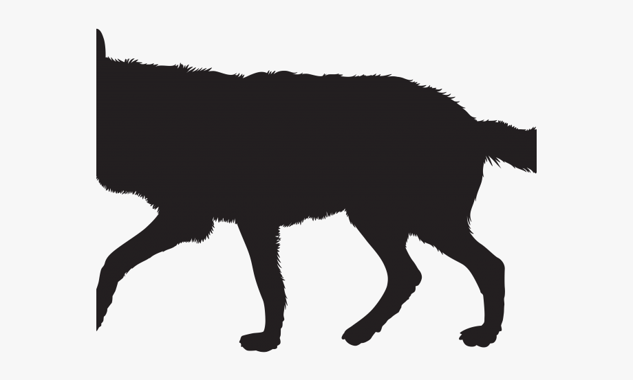 Shadow Clipart Wolf.