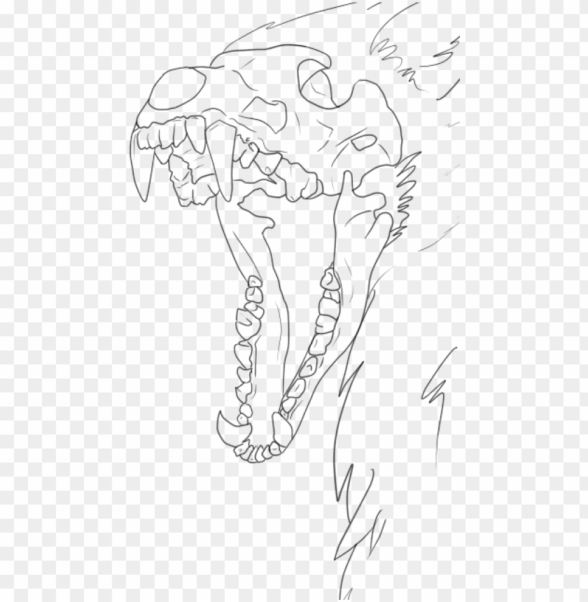 wolf skull drawing base PNG image with transparent.