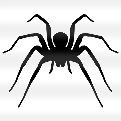 Wolf Spider Clipart 20 Free Cliparts Download Images On