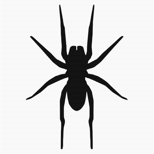 Spider clipart no legs.