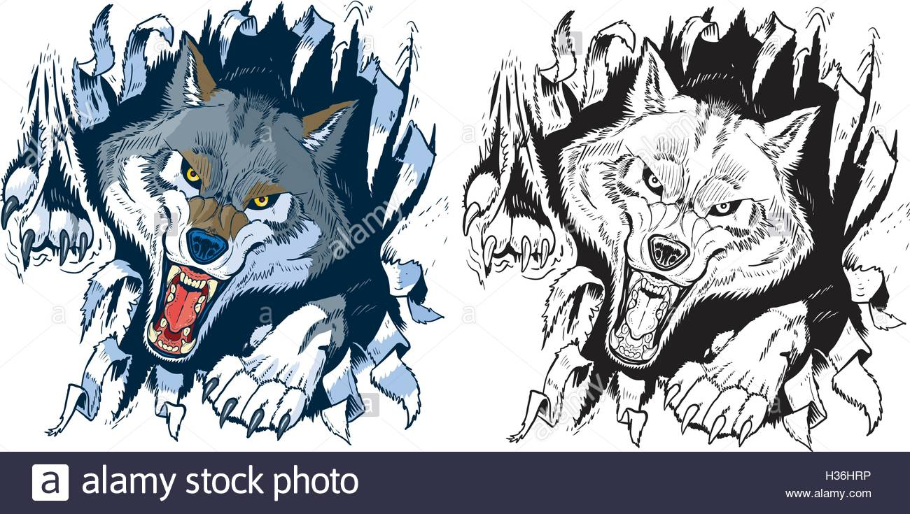 Wolf Teeth Drawing at GetDrawings.com.