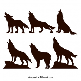 Wolf Vectors, Photos and PSD files.