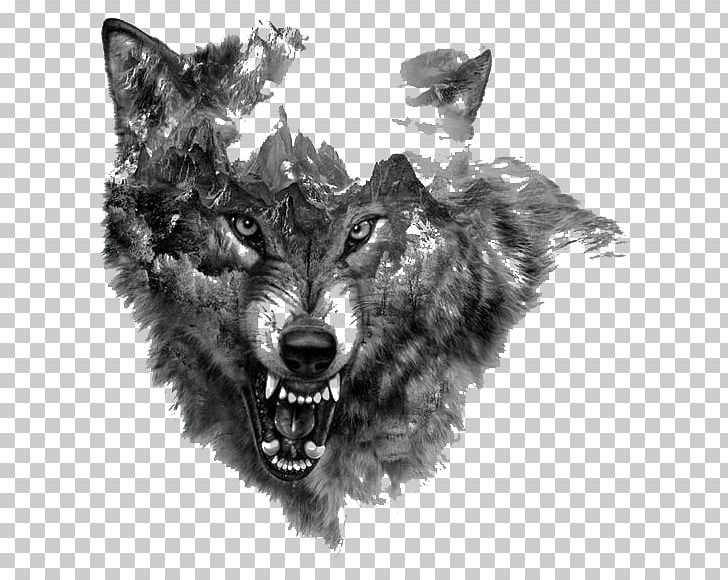 Arctic Wolf Tattoo Northern Rocky Mountain Wolf Flash PNG.