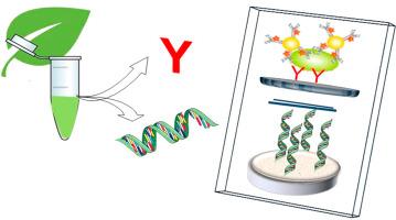 Biosensors and Bioelectronics.