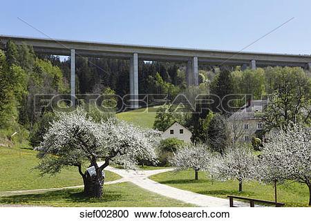 Stock Photography of Austria, Carinthia, View of motorway bridge.