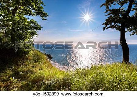 Stock Photograph of Wolin National Park, Baltic Sea, Poland.