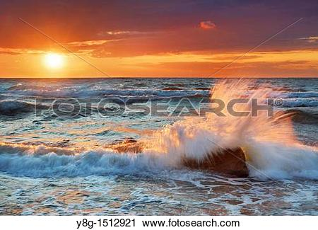Stock Photography of Wolin National Park, Baltic Sea, Poland.