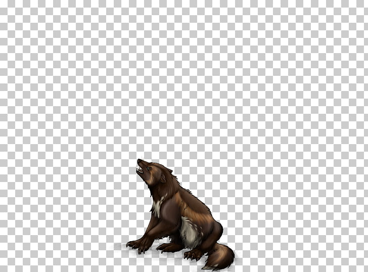 Wolverine Animal Portable Network Graphics Mammal Wildlife.