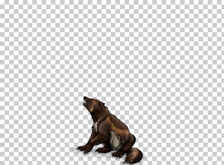 Wolverine Animal Portable Network Graphics Mammal Wildlife.