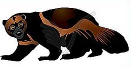 Free Wolverine Clipart.