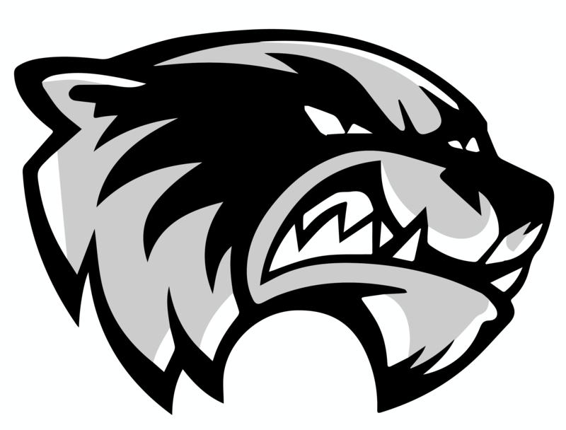 Communications / Skyview Wolverines Logos.