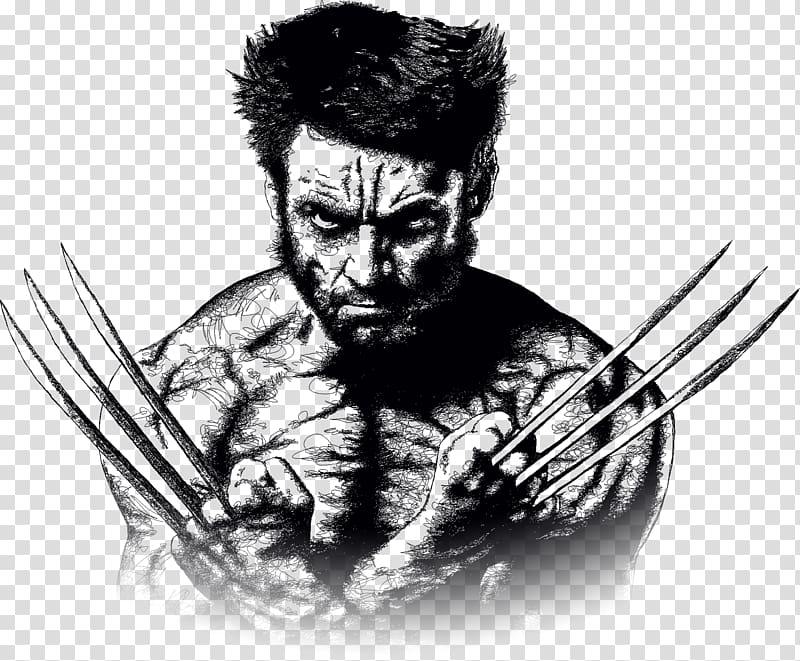 Wolverine illustration, Wolverine Minerva Design Drawing.