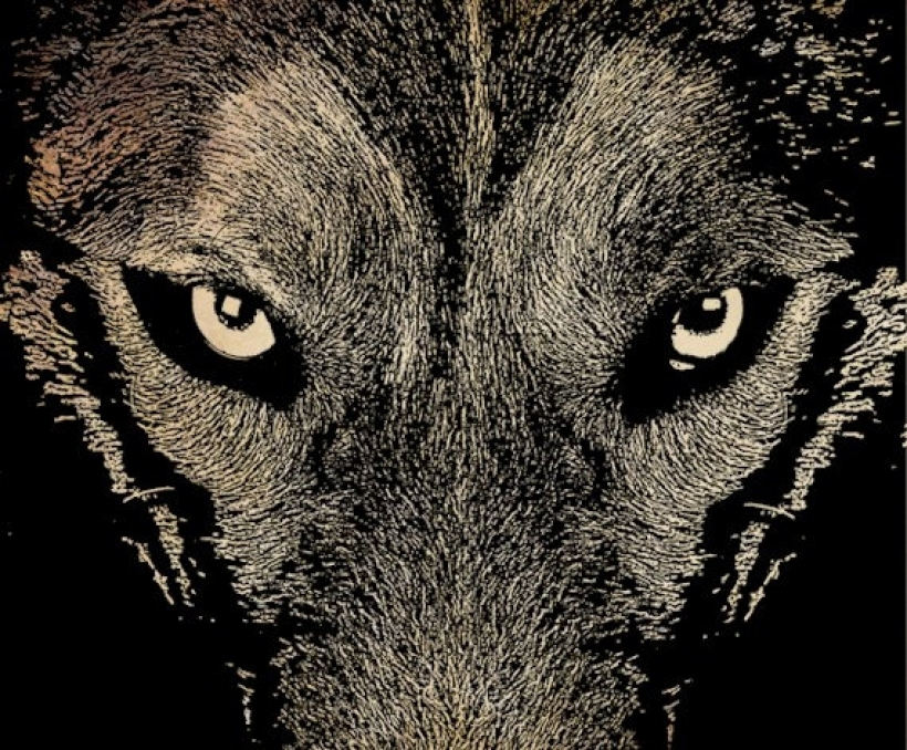 Wolf Eyes Clipart.