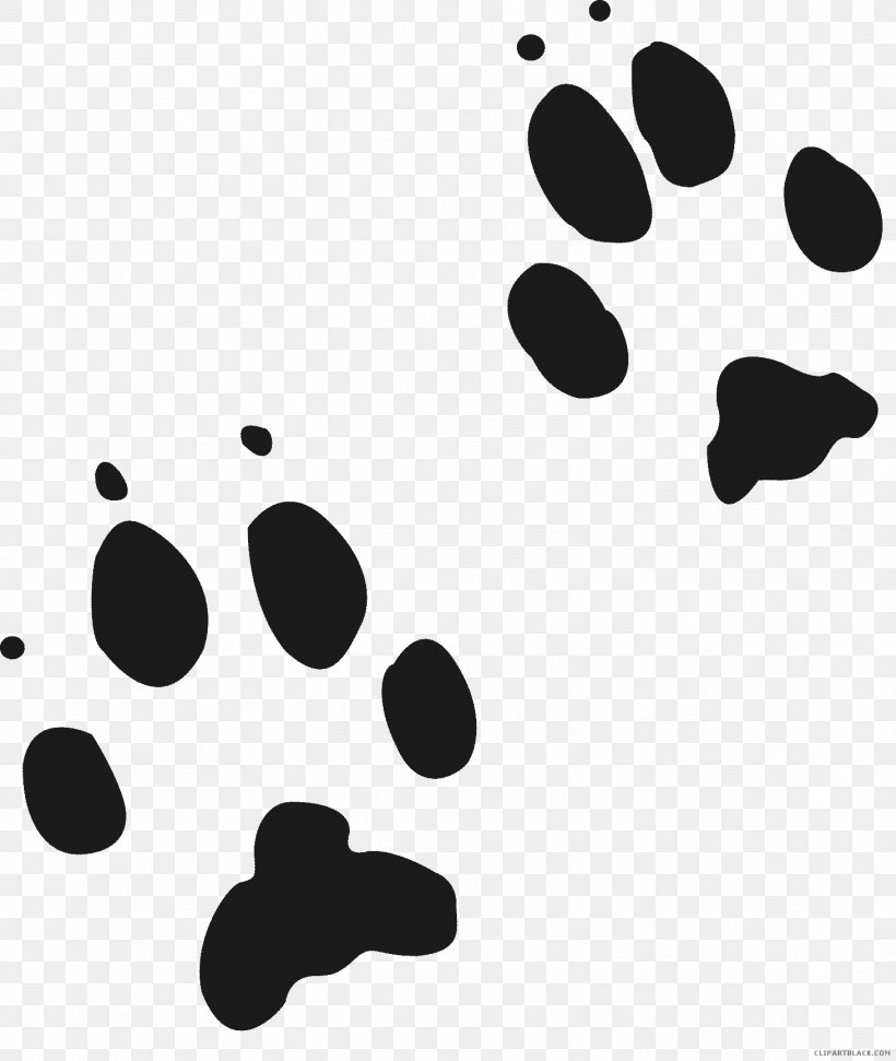 Red Fox Wolf Gray Fox Animal Track Cougar, PNG, 1463x1734px.