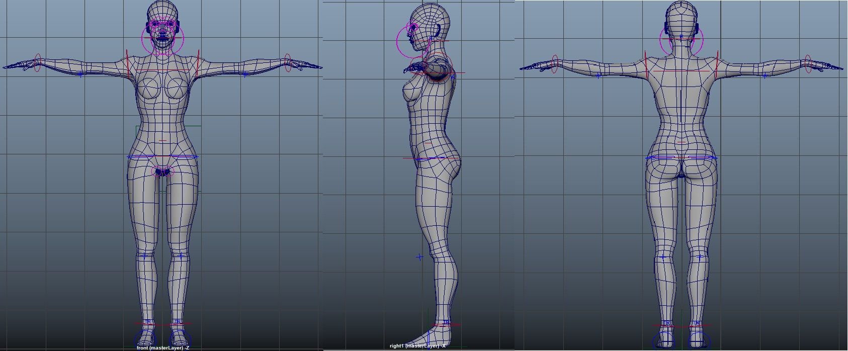 Unique Human Body Reference T Pose.