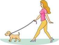 Dog walking clipart girl.