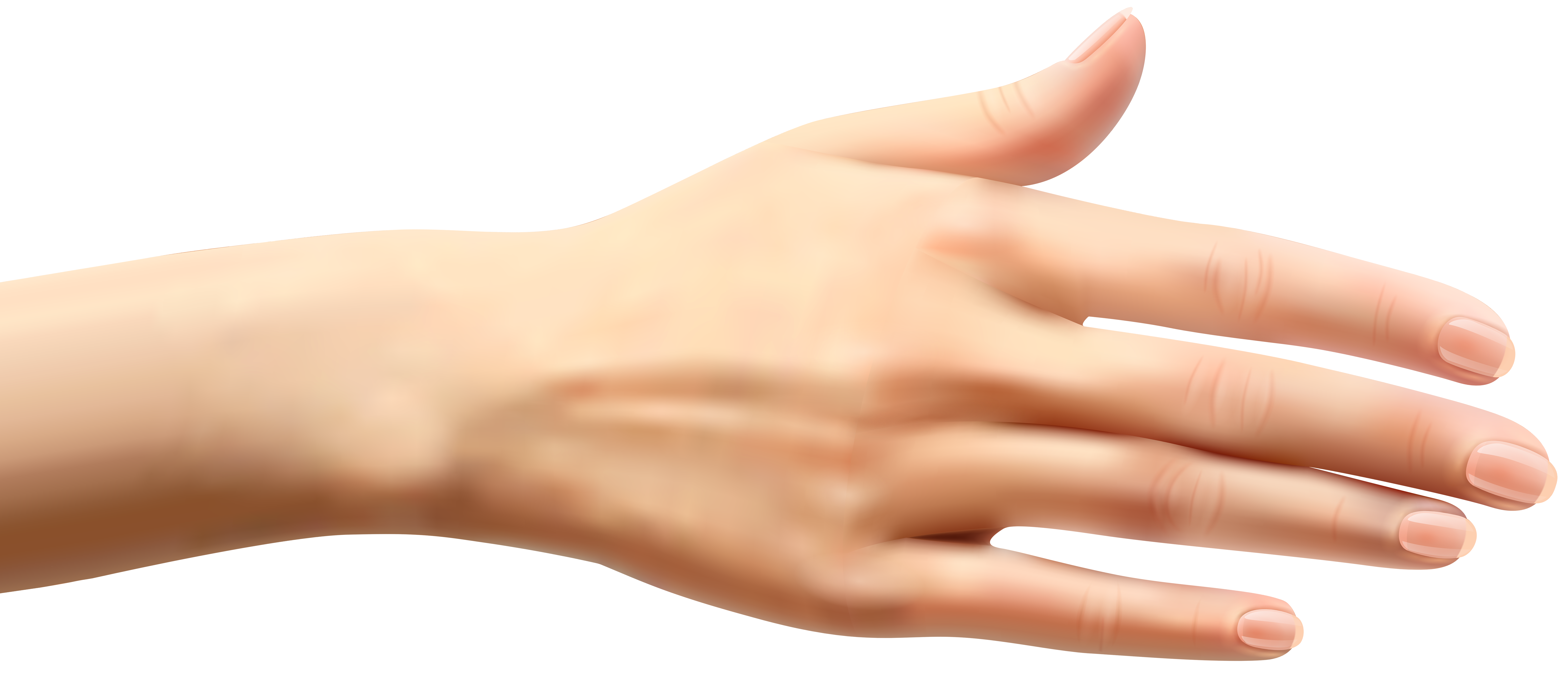 Female Hand PNG Clip Art.