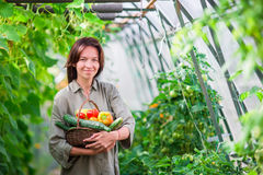 Woman Greenhouse Holding Basket Vegetables Stock Photos, Images.