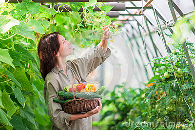 Woman Holding Many Baskets Of Greenery Clipart Free.