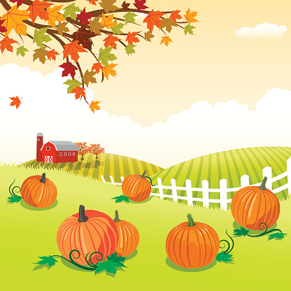 Pumpkin patch themed backgrounds clipart.