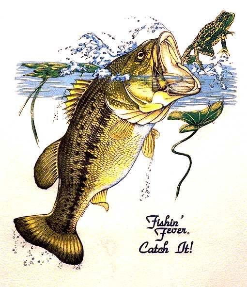 Similiar Happy Birthday Bass Fisherman Keywords.